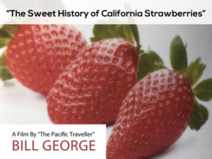 The Sweet History of California Strawberries - film for sale